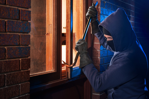 Theft and Crime Insurance